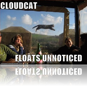 funny-pictures-cloud-cat